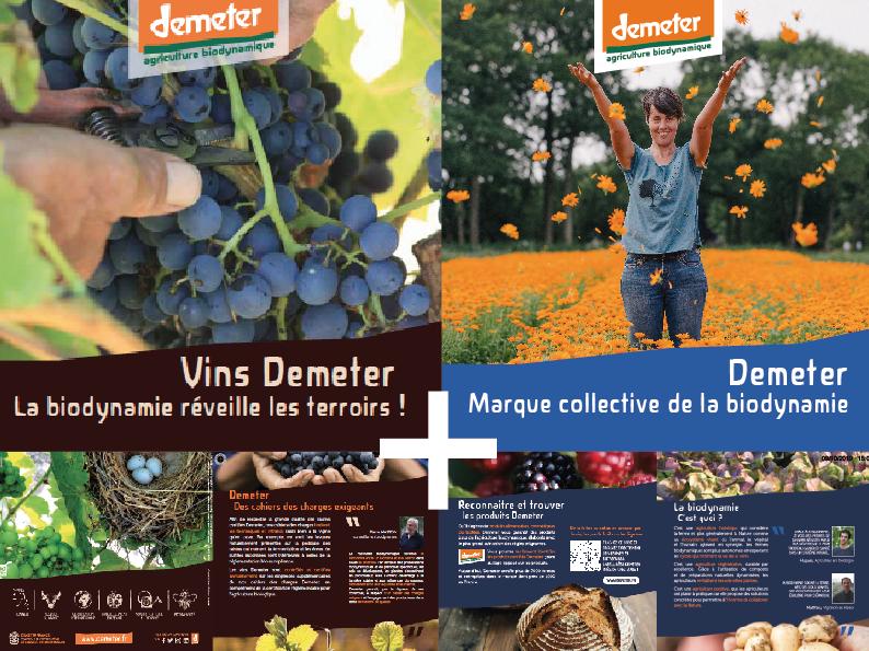 exemple de création graphique et d'impression Média storming - dépliants pour Demeter France