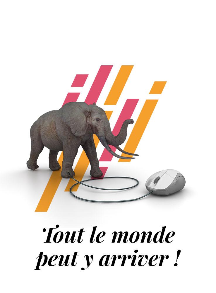 Un éléphant avec une souris d'ordinateur....??? Tout le monde peut se former au community management!